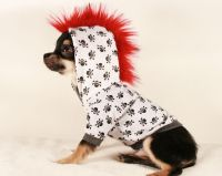 Tiny Teacup Punk Mohawk Skull and Bones chihuahua Hoodie ...