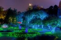 The Atlanta Botanical Garden hosts the magical Garden ...