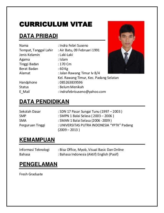 contoh resume cv yang baik