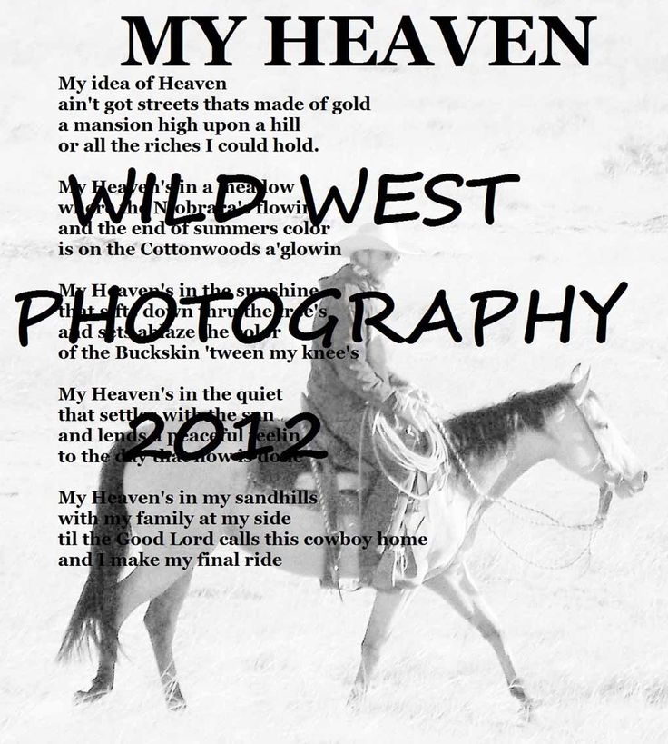 158 best images about Horse Poems on Pinterest