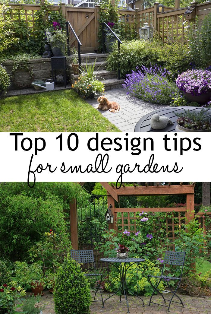 25 Best Ideas About Small Gardens On Pinterest Small Garden
