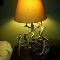 25+ best ideas about Deer antler lamps on Pinterest ...
