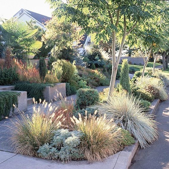 25+ best ideas about Modern front yard on Pinterest