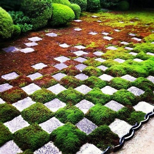 100 Ideas To Try About Shamanic Gardening Book Gardens Trees