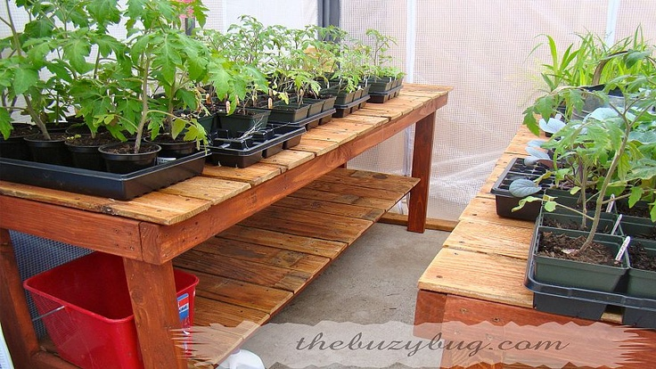 Recycled Wood Fence Turned Into A Beautiful Greenhouse