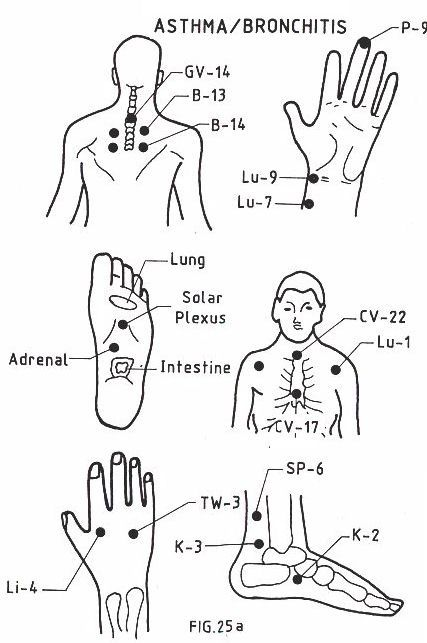 25+ best ideas about Acupressure points chart on Pinterest