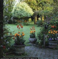 Best 25+ Backyard retreat ideas on Pinterest | Shed turned ...