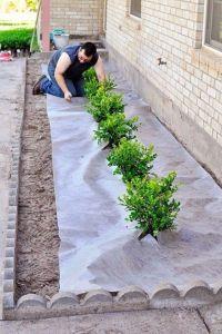 25+ best Landscaping ideas on Pinterest | Front ...