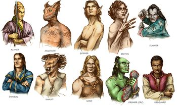 elder scrolls online all races  Google Search  ESO  Pinterest  All races Concept art and Art