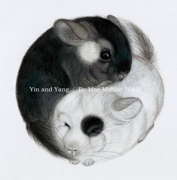 75 best images about yin yang on Pinterest Tattoo