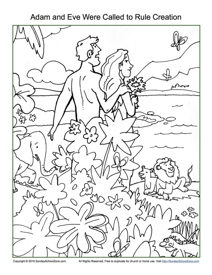God Made Adam Coloring Page Sketch Coloring Page