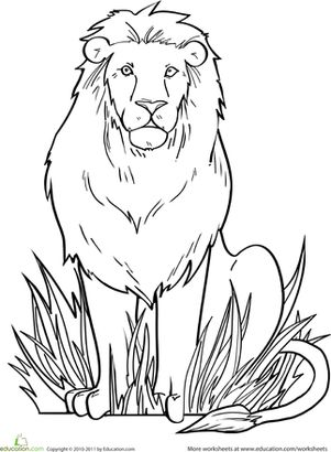 17 best ideas about Lion Coloring Pages on Pinterest
