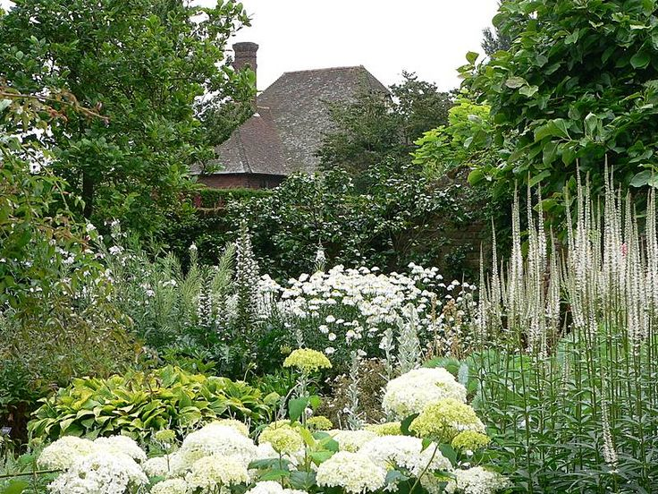 The 25 Best Ideas About White Gardens On Pinterest Snowball