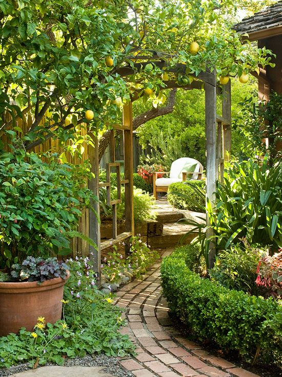 25 Best Ideas About Beautiful Gardens On Pinterest Flowers