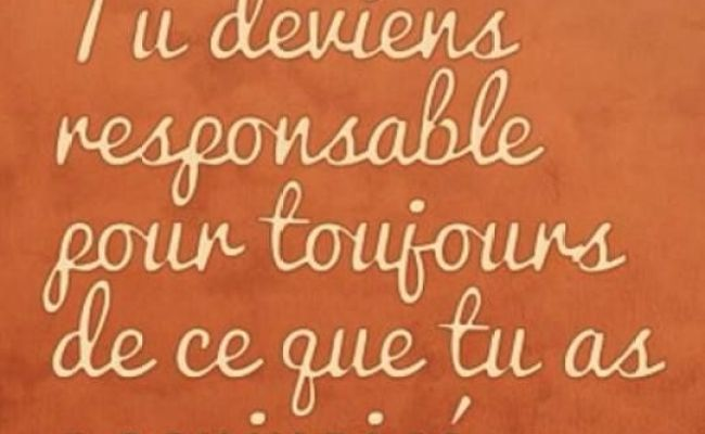 78 Images About French Quotes On Pinterest French