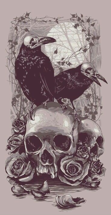 Pink Feathers Falling Wallpaper 794 Best Images About Skulls And Roses On Pinterest