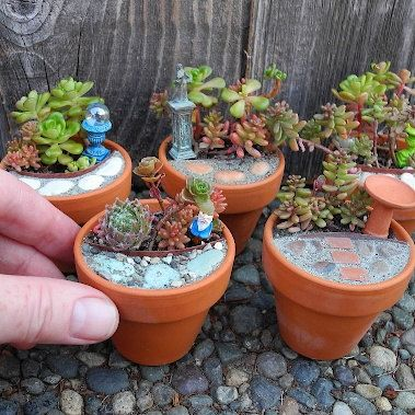 149 Best Images About ✽ Miniature Gardens On Pinterest Gardens