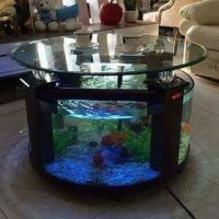 25+ best ideas about Fish Tank Coffee Table on Pinterest ...