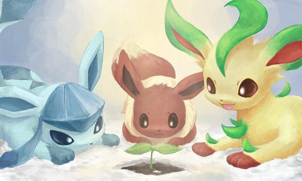 Mudkip Iphone Wallpaper 1322 Best Images About Pokemon On Pinterest Mudkip