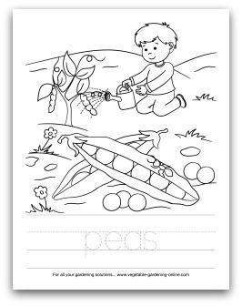 97 best images about Kids' Printable Garden Worksheets