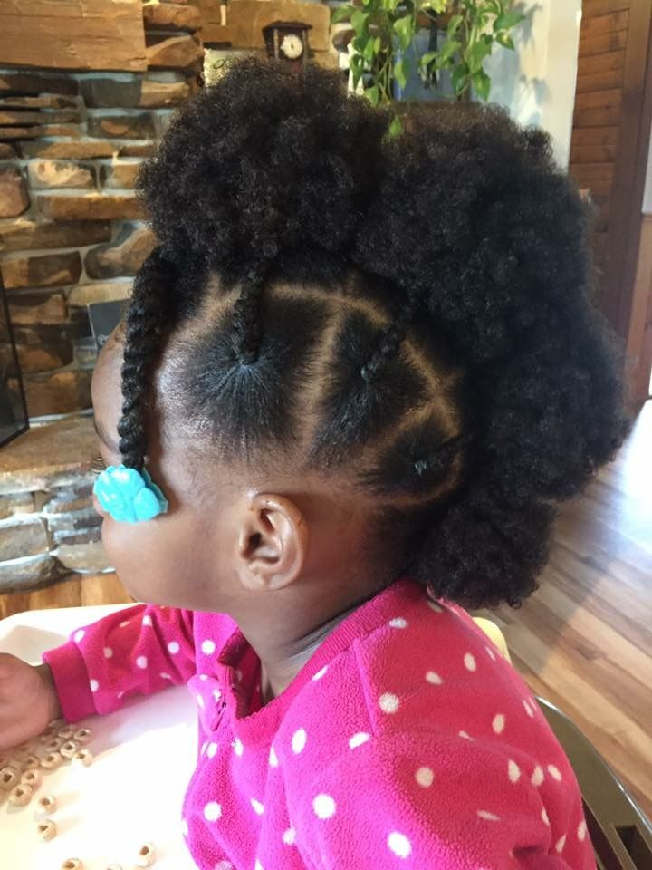 Hairstyles For Little Girls Natural Hair