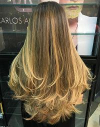 25+ Best Ideas about Long Layered Hair on Pinterest | Long ...