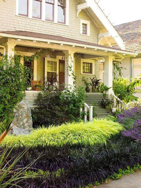 1000 shrubs landscaping