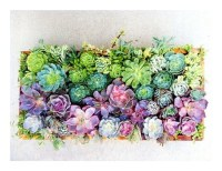 17 Best images about Living wall art on Pinterest ...