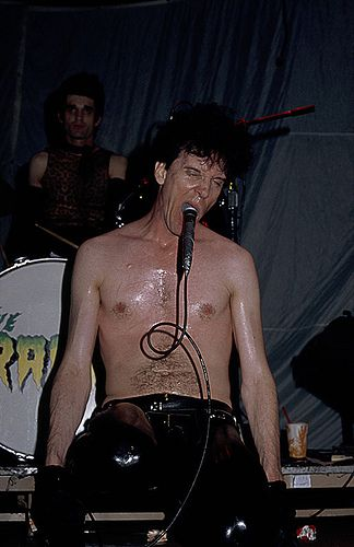 52 best images about Poison Ivy  Lux Interior on