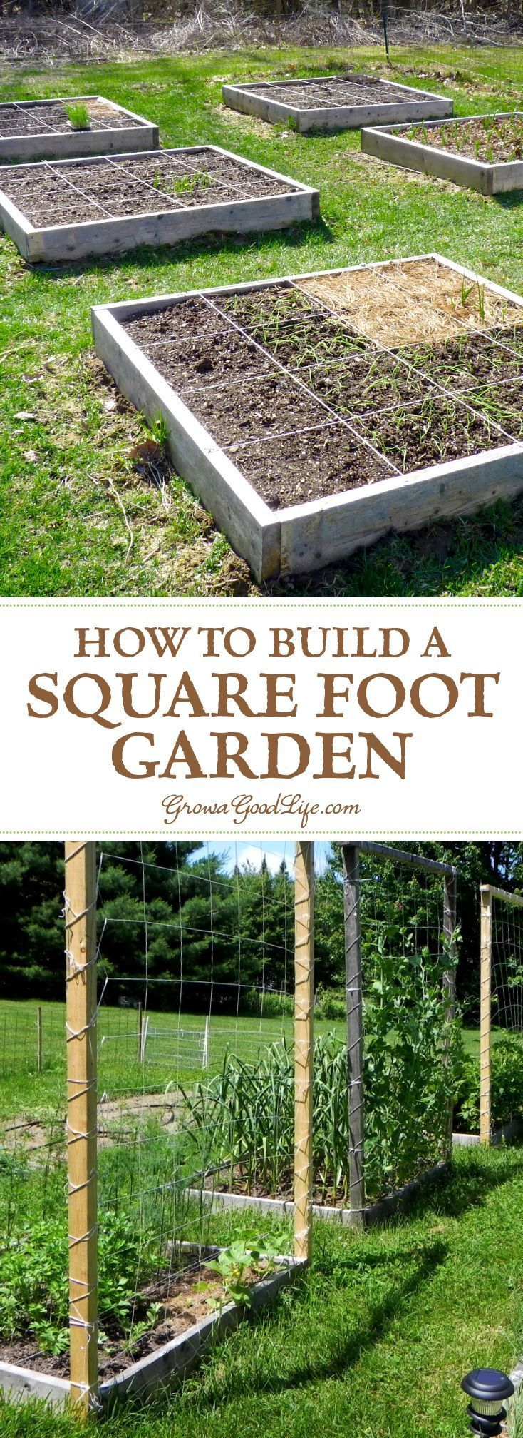 25 Best Ideas About Quick Garden On Pinterest Growing Plants