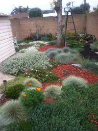 17 Best ideas about Zero Scape on Pinterest   Asian lawn ...