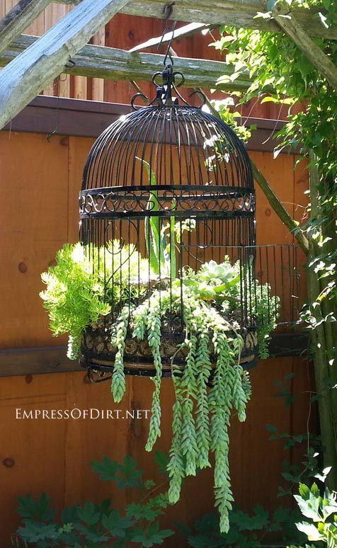 17 Best Garden Ideas On Pinterest Gardening Gardens And