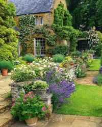 Best 25+ English Country Gardens ideas on Pinterest ...