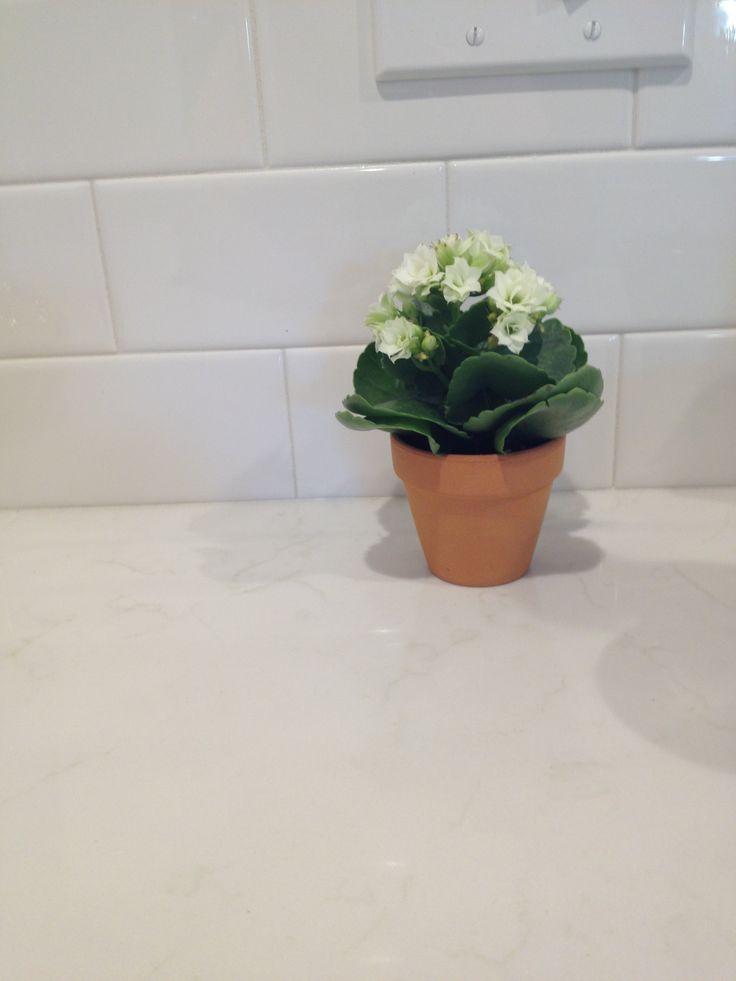 lowes kitchen remodel steel cabinets pental quartz lattice | white kitchens pinterest ...