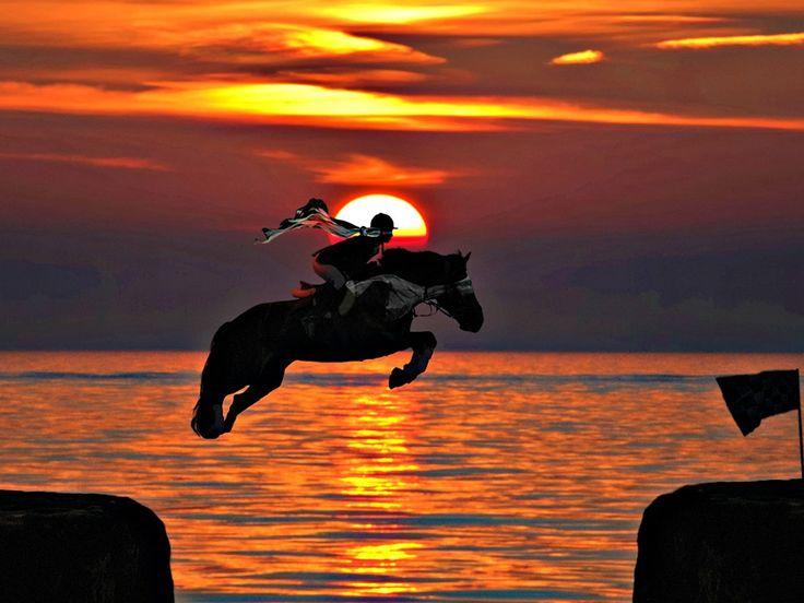 Horse Riding Wallpaper Hd Horse Jumping Sunset