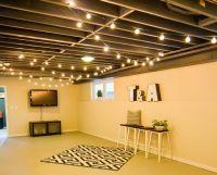 25+ Best Ideas about Basement Lighting on Pinterest ...