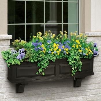 62 Best Images About Window Box Ideas On Pinterest Planters