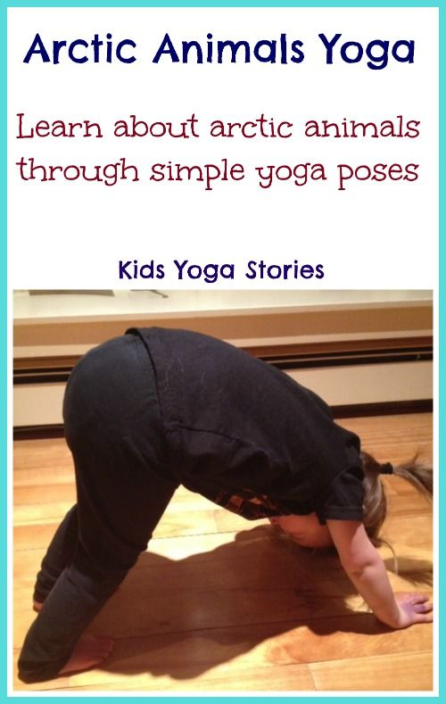 Learn about Arctic Animals through books and simple yoga poses for kids – Kids Yoga Stories