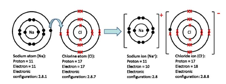 The 25+ best Ionic compound ideas on Pinterest