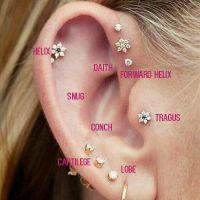 Best 25+ Ear Piercings Tragus ideas on Pinterest | Ear ...