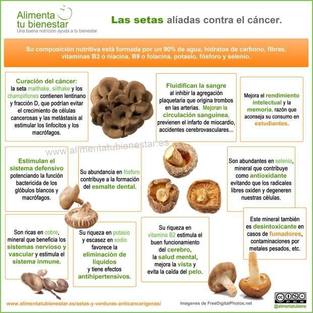 Infografía Setas cáncer