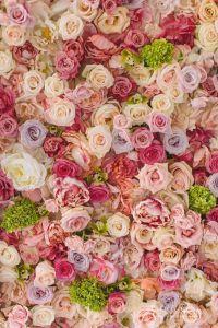 Best 25+ Flower wall ideas on Pinterest | Flower wall ...