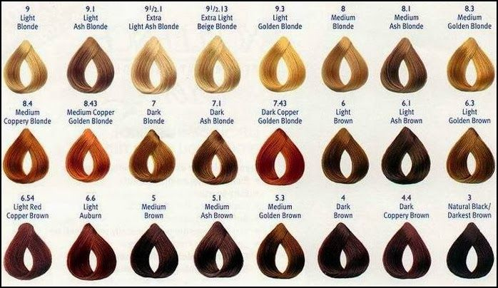 Loreal Excellence Creme Color Chart  Hair