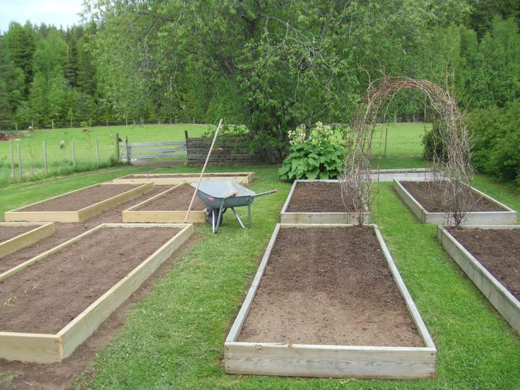 44 Best Images About Backyard Potager On Pinterest Gardens