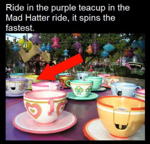 10 Random facts about Disney Parks… (10
