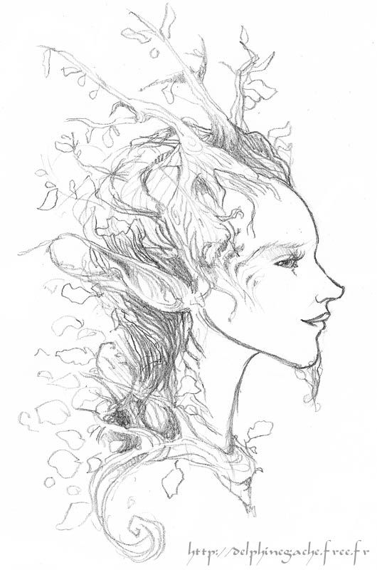 166 best images about Ents, Dryads and other tree