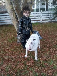 100+ ideas to try about Pet Halloween Costumes | Homemade ...