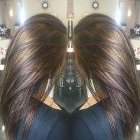 17 Best ideas about Brunette Highlights on Pinterest