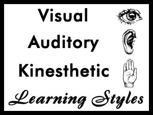 74 best images about Learning Styles on Pinterest