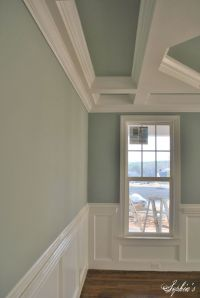SW Silvermist 7621 | Home - Color/Flourish/Paint ...